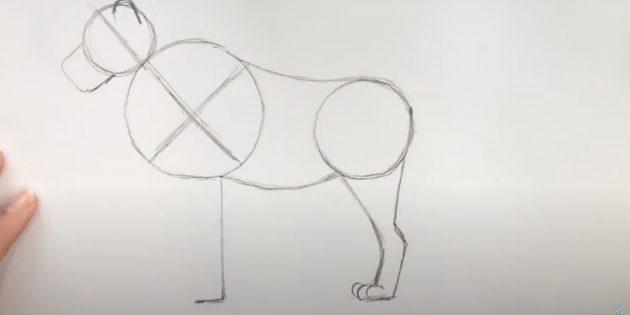 Как нарисовать льва: Придайте форму задней лапе