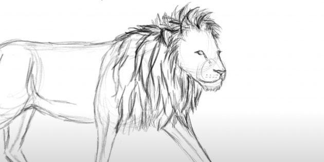 Как нарисовать льва: Добавьте шерсть на гриву