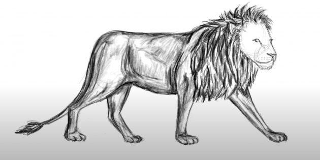 Как нарисовать льва: Закрасьте тело и детализируйте гриву