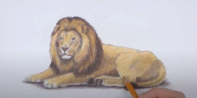 Реалистичный лежащий лев