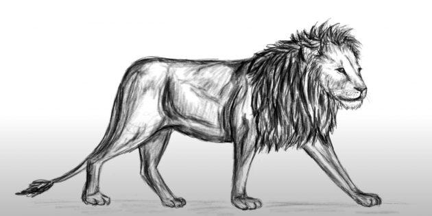 Реалистичный лев в движении