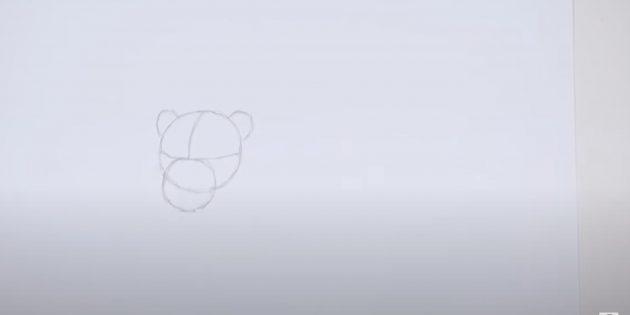 Как нарисовать льва: Наметьте мордочку и уши