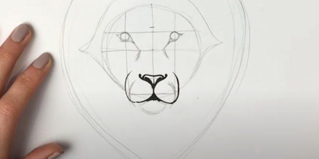 Как нарисовать льва: Нарисуйте мордочку