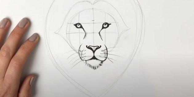 Как нарисовать льва: Нарисуйте усы