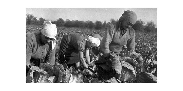 В СССР было лучше — миф: не все были равны
