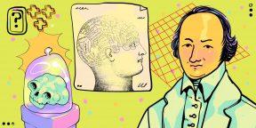 Что такое френология и правда ли по форме черепа можно определить способности человека