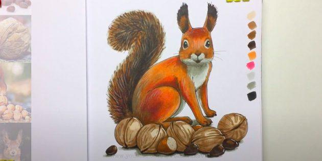 Как нарисовать реалистичную белку с орехами фломастерами