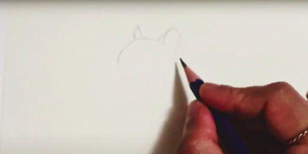 Как нарисовать белку: наметьте верхние очертания головы