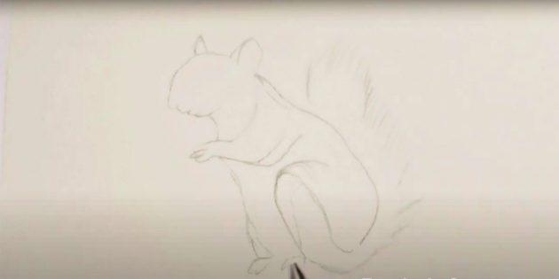 Как нарисовать белку: набросайте хвост
