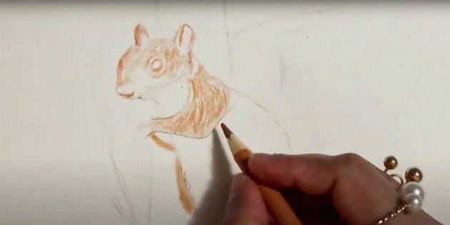 Как нарисовать белку: начните штриховать, нарисуйте глаз и нос