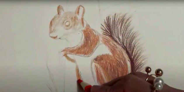 Как нарисовать белку: прорисуйте оранжевым шёрстку