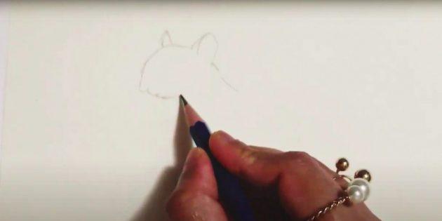 Как нарисовать белку: нарисуйте голову