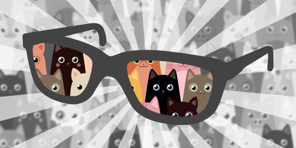 Сложный тест для глаз: кто здесь котик, а кто — свинья?