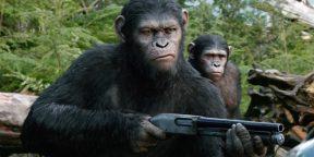Neuralink Илона Маска вживила в мозг обезьяны чип, позволяющий играть в видеоигры силой мысли
