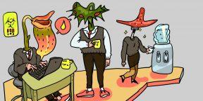 7 признаков нездоровой атмосферы на работе