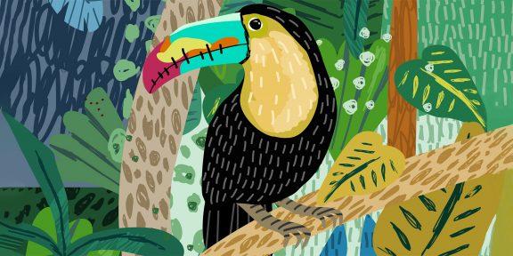 Как нарисовать попугая: 19 простых способов