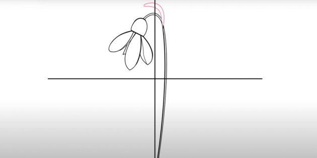 Как нарисовать подснежники: Нарисуйте верхний отросток