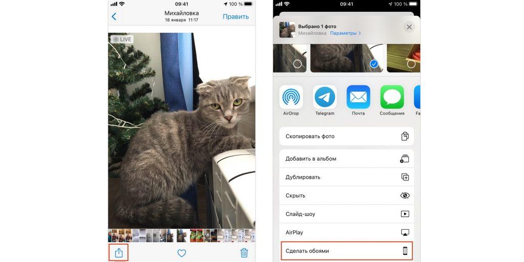 Экран блокировки iPhone: выберите снимок и нажмите «Сделать обоями»