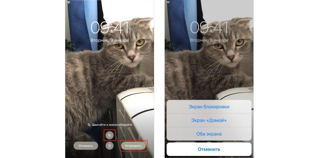 Отмасштабируйте картинку и установите на нужный экран