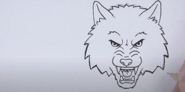 Как нарисовать волка: Нарисуйте уши и затылок