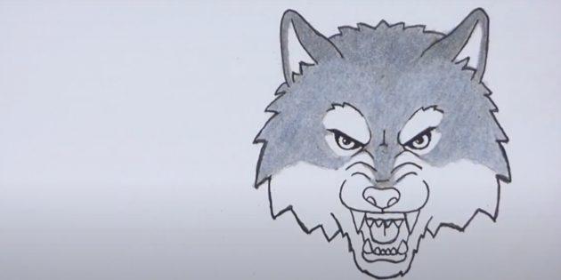 Как нарисовать волка: Закрасьте голову