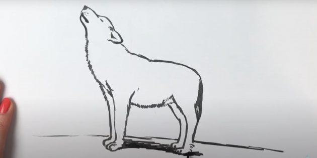 Стоящий реалистичный волк