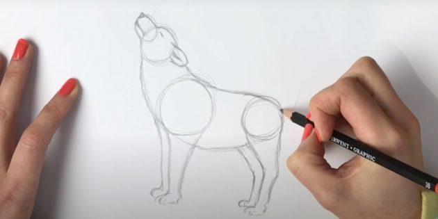 Как нарисовать волка: Нарисуйте вторую пару лап