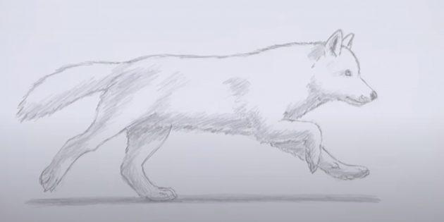 Как нарисовать волка: Заштрихуйте волка