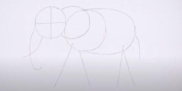 Как нарисовать реалистичного стоящего слона: ноги, хвост и хобот