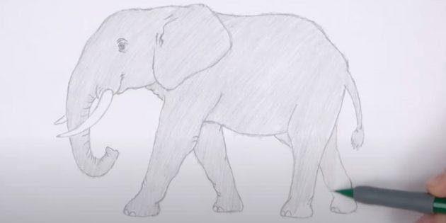 Закрасьте слона