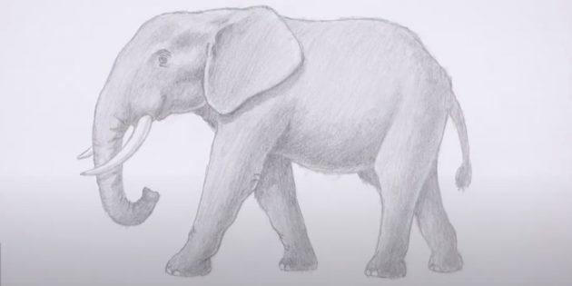 Как нарисовать реалистичного стоящего слона: добавьте тени