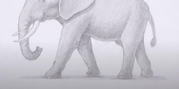 Нарисуйте тень под ногами слона