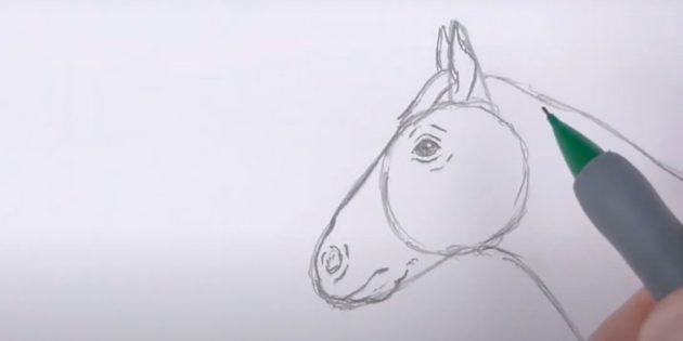 Как нарисовать лошадь: Прорисуйте рот, подбородок и уши