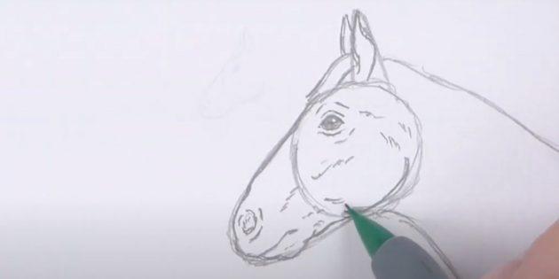 Как нарисовать лошадь: Прорисуйте челюсть
