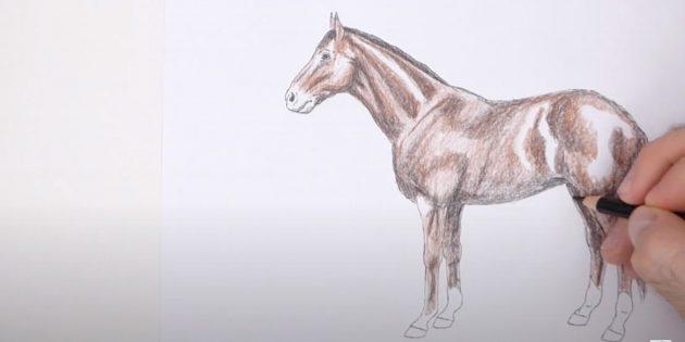 Как нарисовать лошадь: Добавьте чёрный и светло-коричневый цвета