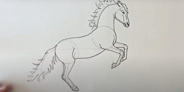 Как нарисовать лошадь: Прорисуйте хвост, спину и живот