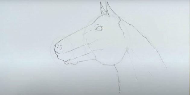 Как нарисовать лошадь: Обведите шею и нарисуйте ноздрю