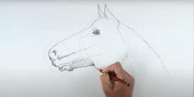Как нарисовать лошадь: Закрасьте глаз и ноздрю
