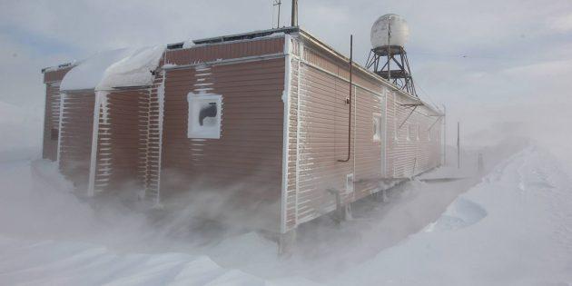 Антарктида: ветреный день на станции «Беллинсгаузен». Вид на радиодом