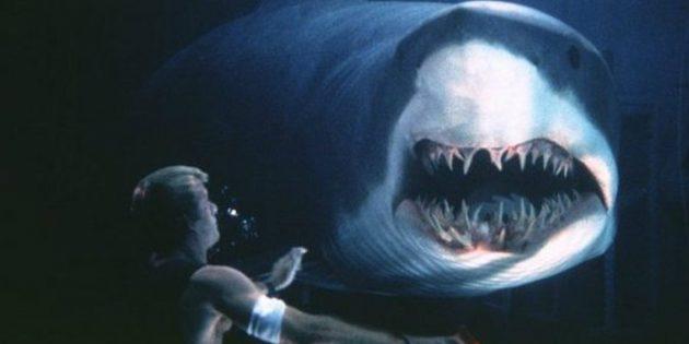 Кадр из фильма про подводный мир «Глубокое синее море»