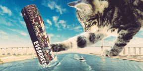 Пробка в Суэцком канале: гигантский контейнеровоз перекрыл путь сотням судов и стал причиной мемов