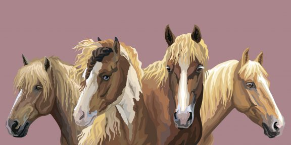 Как нарисовать лошадь: 24 подробные инструкции
