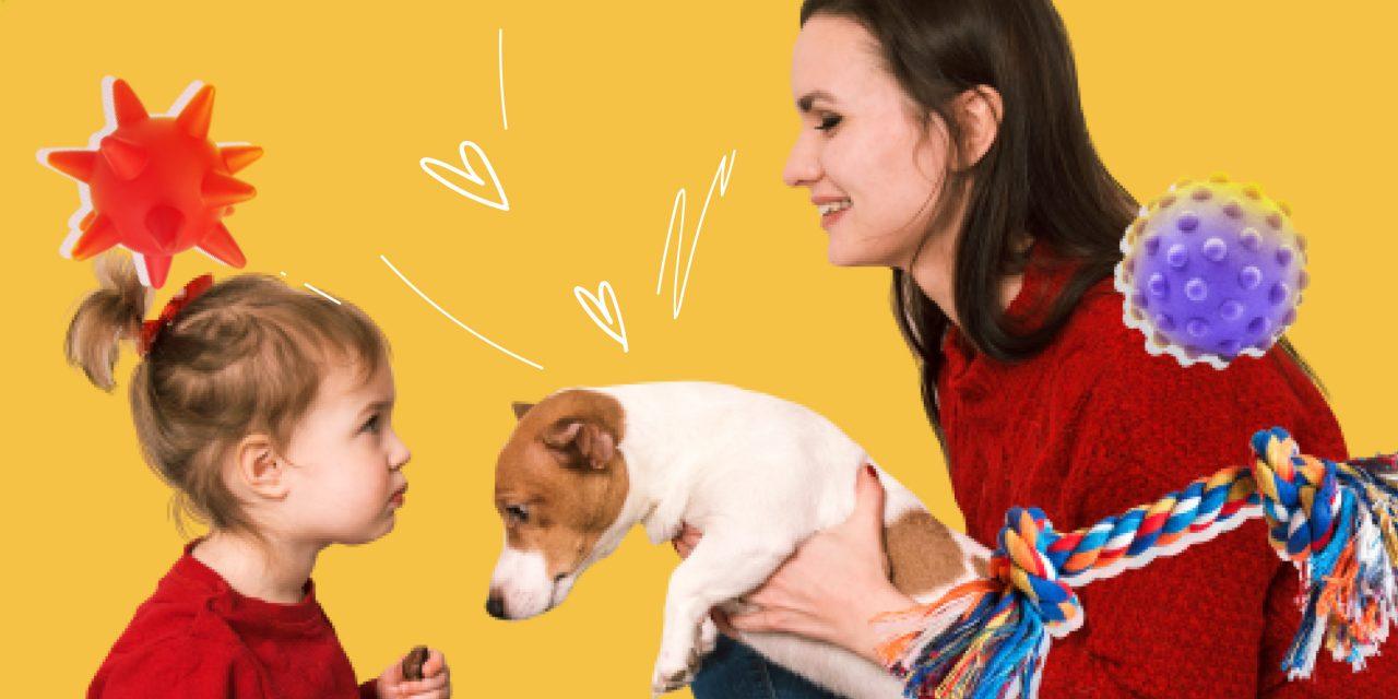 Как воспитать счастливого щенка: полезные техники и секреты дрессировки