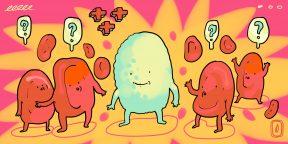 Зачем нужны лейкоциты и сколько их должно быть в норме