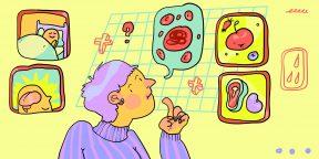 Зачем нам гемоглобин и какова его норма