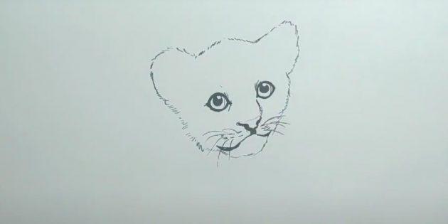 Как нарисовать тигра: Добавьте деталей