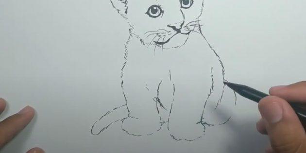 Как нарисовать тигра: Изобразите спину и хвост