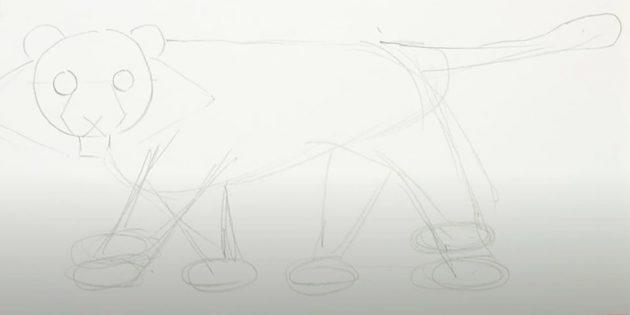 Как нарисовать тигра: Наметьте остальные три лапы и хвост