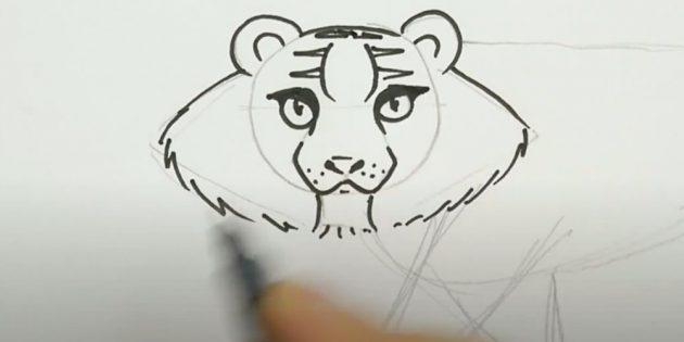 Как нарисовать тигра: По бокам от головы нарисуйте торчащую в стороны шерсть