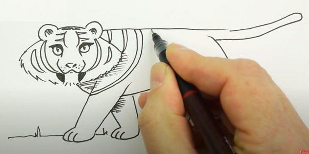Как нарисовать тигра: Добавьте тени и полосы на плече